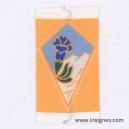 27° Division Alpine Fond orange Tissu
