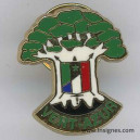 SENEGAL Pin's Franco-Sénégalais vert azur