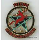 RICM 2° Escadron