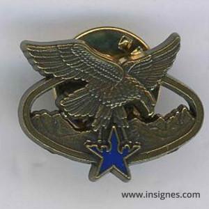 Brevet Aptitude Montagne bronze Pin's