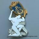 41 Régiment des Transmissions CCL Insigne Drago Brillant